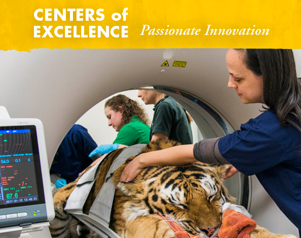 Centers of Excellence -  