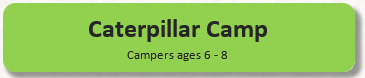 Caterpillar-Camp-Button.PNG