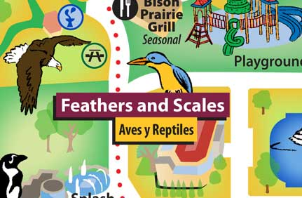 Feathers & Scales