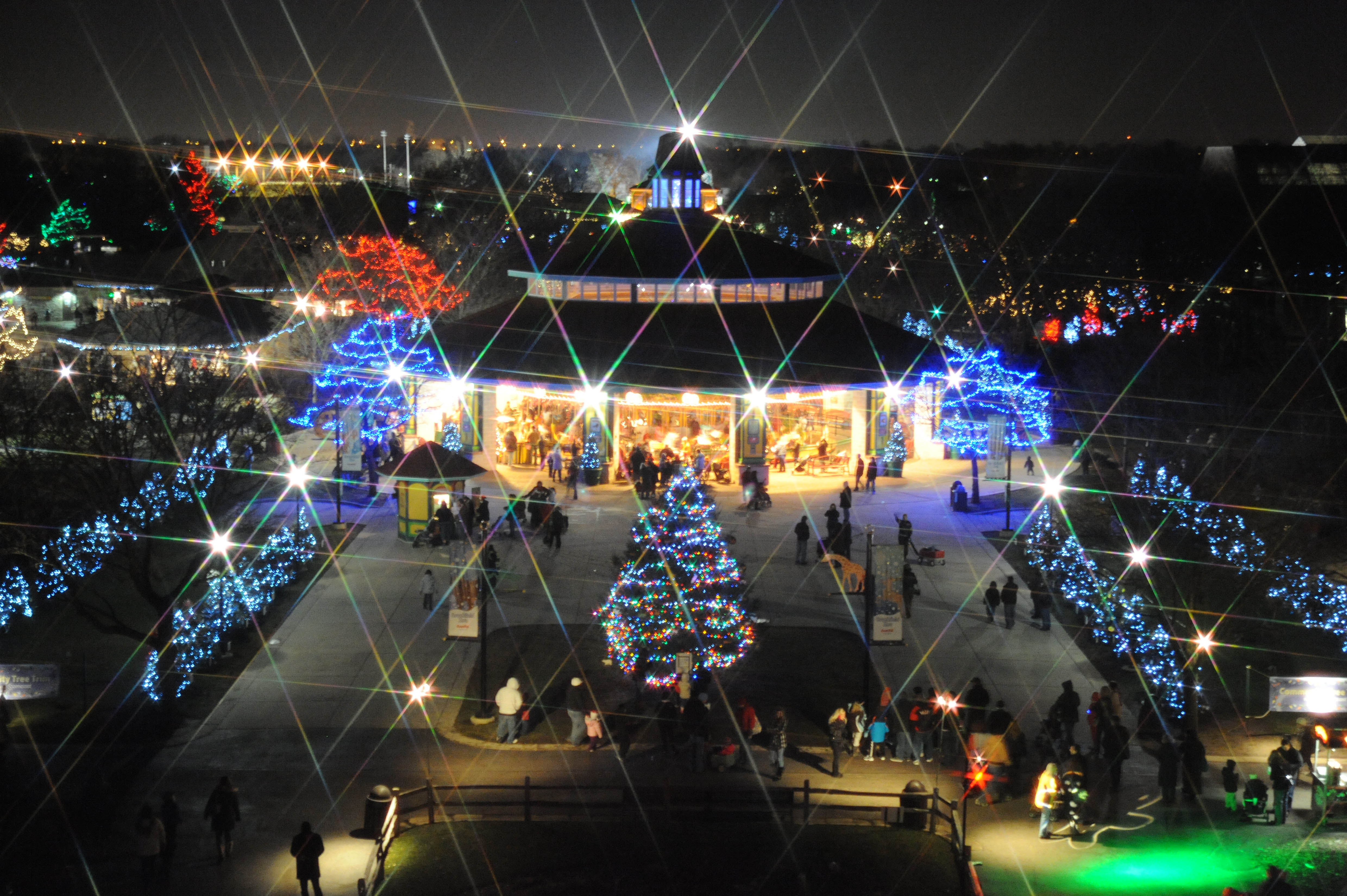 Brookfield Zoo Christmas Lights 2019 Chicago Zoological Society   Holiday Magic Lights up Brookfield
