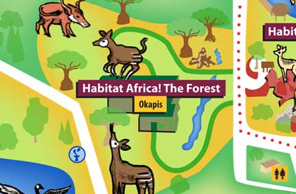 Habitat Africa! The Forest