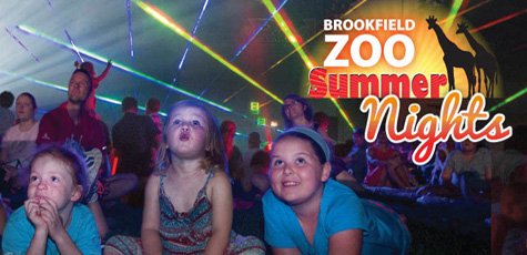 Summer Nights at Brookfield Zoo