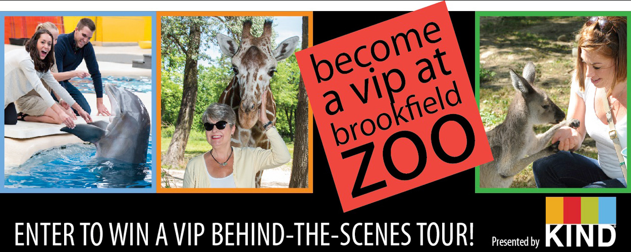 Become a VIP at Brookfield Zoo