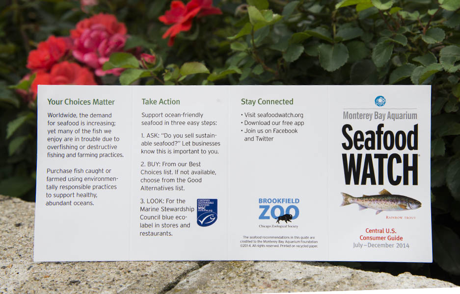 Chicago Zoological Society - Seafood Watch: Making ...