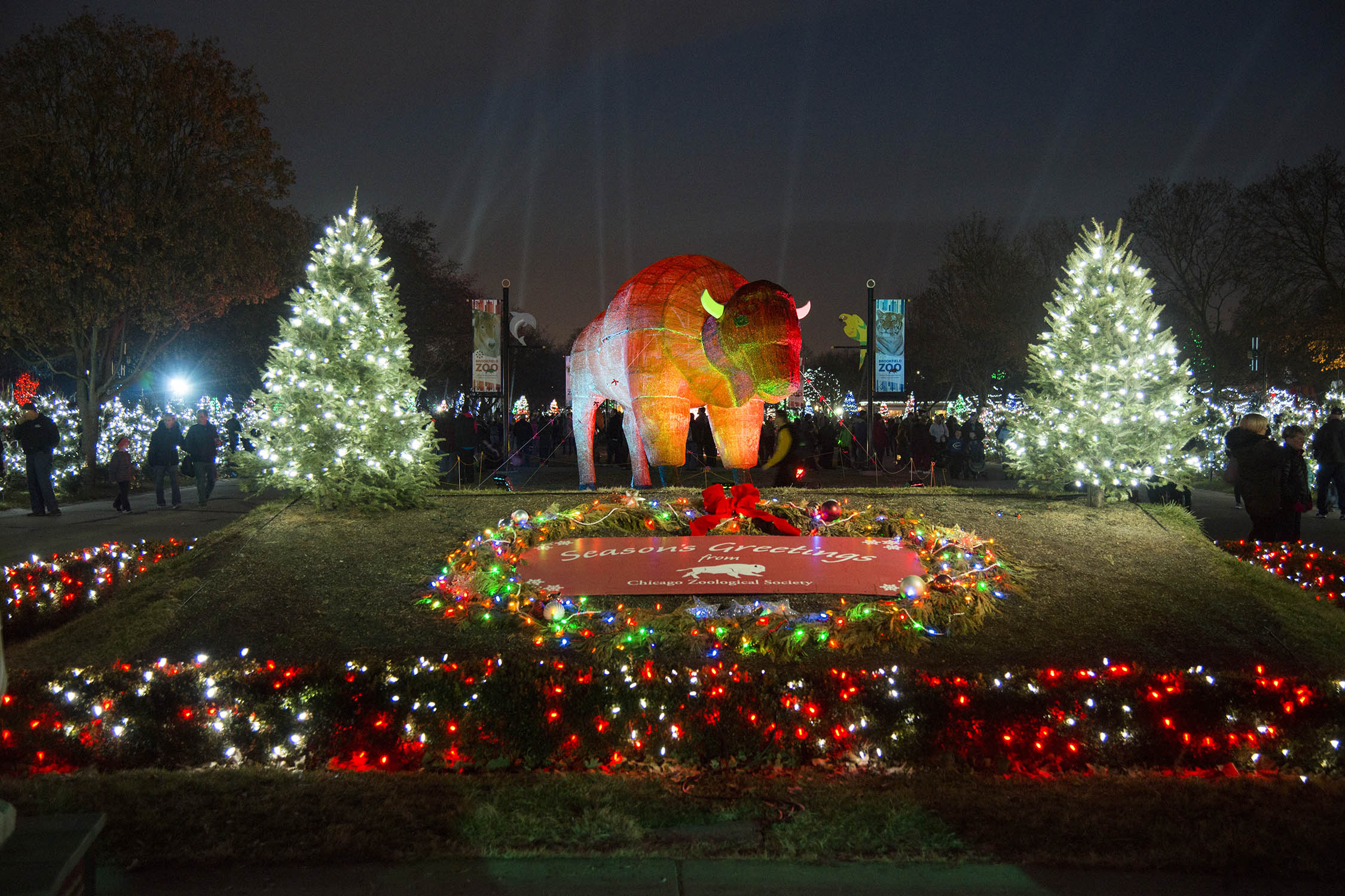Brookfield Zoo Christmas Lights 2019 Chicago Zoological Society   Holiday Magic Festivities Light up