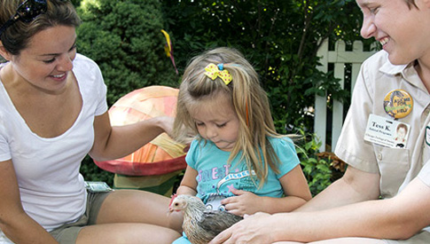 Family Play Programs at Brookfield Zoo
