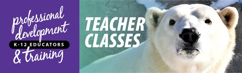 Teacher classes