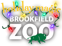 Holiday Magic at Brookfield Zoo